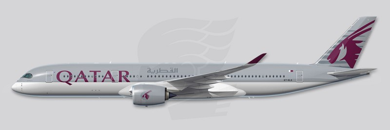 http://www.stephanebeilliard.com/site/storage/cache/images/001/092/Profile-A350-Qatar-A7ALA-SBeilliard,medium_large.1415563551.jpg