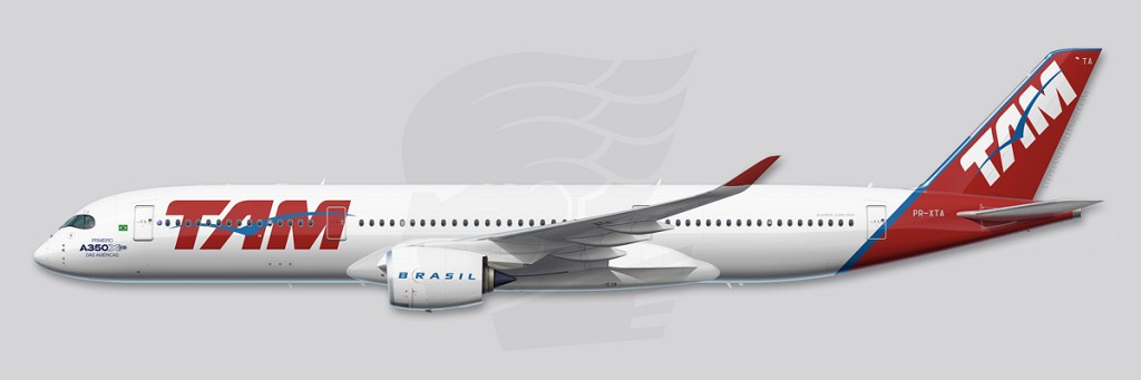 A350 Profile Illustration - TAM