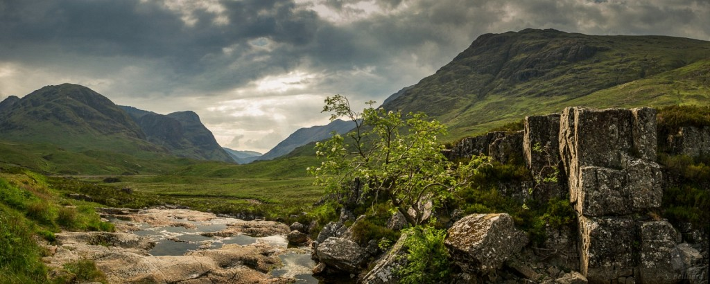 Glencoe and Tree