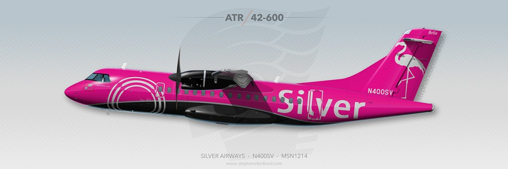 ATR Profile Illustration - Silver