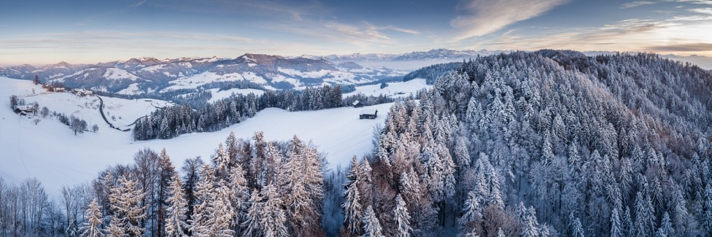 Oberland Winter Pano I